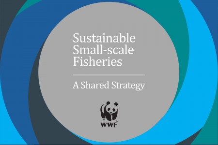 wwf-sustainable-small-scale-fisheries